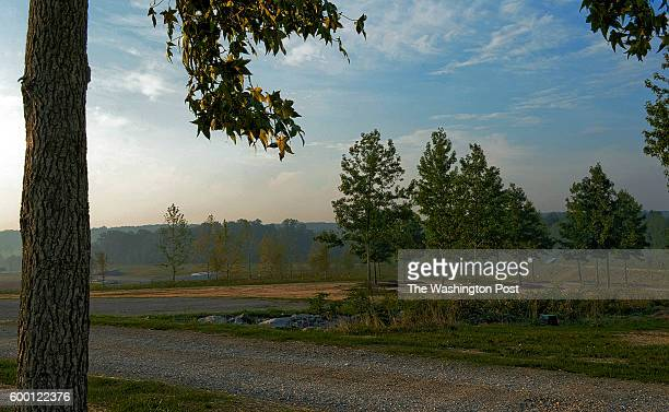 A vew of some of the sweet gum trees right one for each victim at the Flight 93 September 11 memorial on August 2011 in Shanksville PA