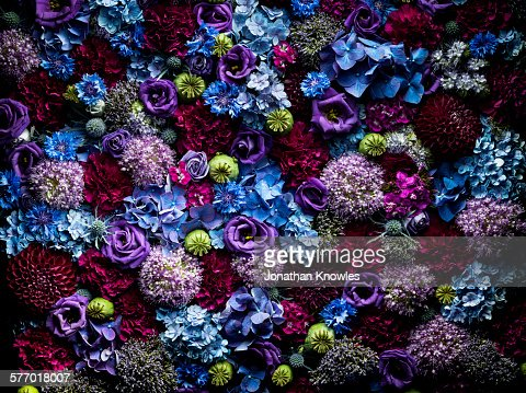 Vibrant and colourful floral arrangement, close up
