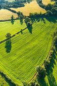 Vibrant green pasture patchwork fields picturesque rural landscape aerial photograph