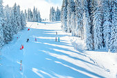 Vibrant panorama of the slope at ski resort, snow pine trees, blue sky