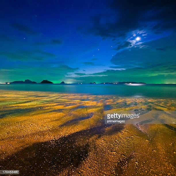 Vibrant starry night above beautiful tropical beach
