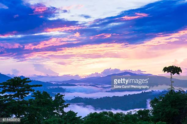 Vibrant sunrise over Danum Valley rain forest in Borneo.