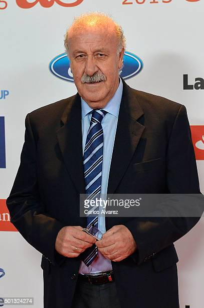 Vicente del Bosque attends the 2015 'AS Del Deporte' Awards at The Westin Palace Hotel on December 14 2015 in Madrid Spain