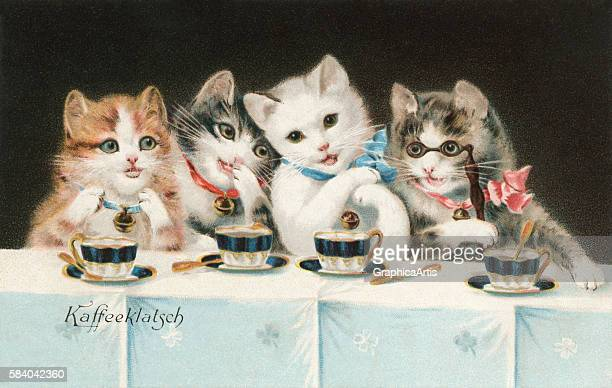 Victorian illustration of four cat girlfriends sitting at a table having a coffee party 1911 Chromolithograph