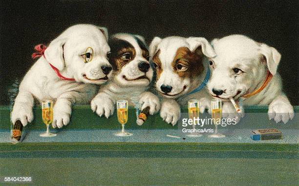 Victorian illustration of four puppy dog friends drinking beer and smoking cigars at a bar 1911 Chromolithograph