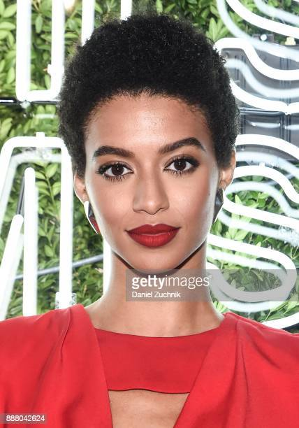 Victoria's Secret model Jourdana Phillips attends the 2017 Pencils of Promise Gala at Central Park on December 7 2017 in New York City