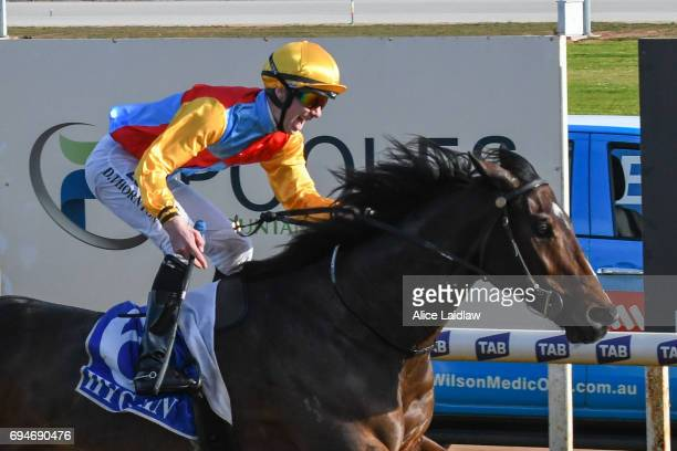 Victory Downs ridden by Damien Thornton wins the Murray Downs Swan Hill Cup at Swan Hill Racecourse on June 11 2017 in Swan Hill Australia