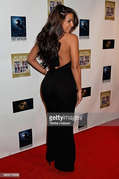 Vida Guerra attends the 'Not Another Celebrity Movie' Los Angeles premiere at Pacific Design Center on January 17 2013 in West Hollywood California
