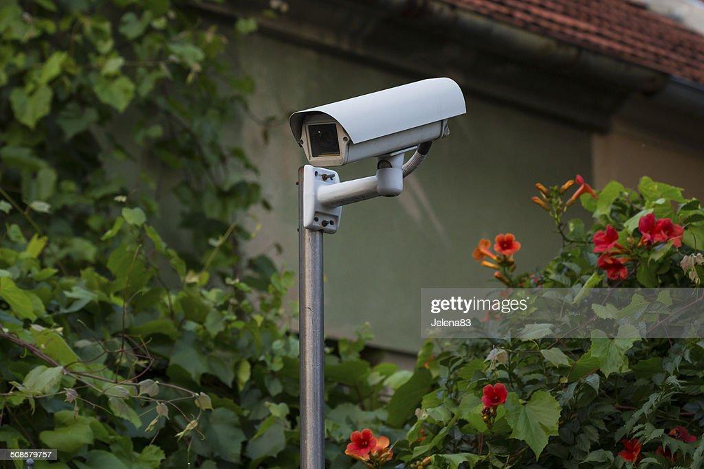 video surveillance camera : Stock Photo