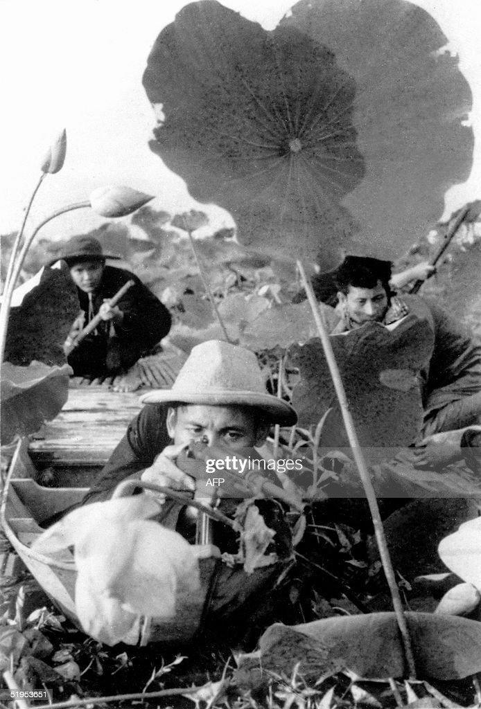 Vietcong fighters lie in ambush in a lotus field 16 August 1969 in South Vietnam during the Vietnam war // Des maquisards vietcong du FNL se tiennent...