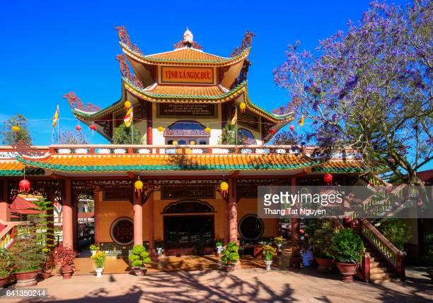 Vietnam Pagoda with jacaranda blossom