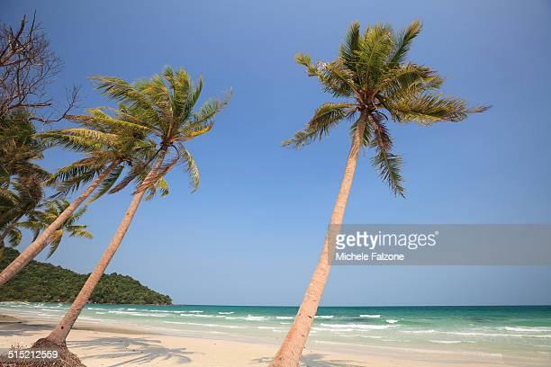 Vietnam, Phu Quoc Island, tropical landscape