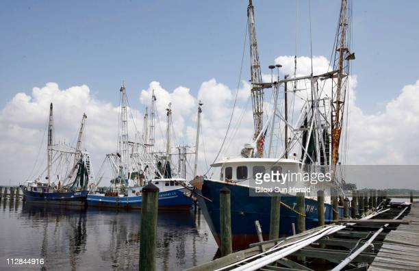 Vietnamese shrimp boats which would usually be out harvesting their catch sit at Lighthouse pier in Biloxi Mississippi June 14 2010 A rally was held...