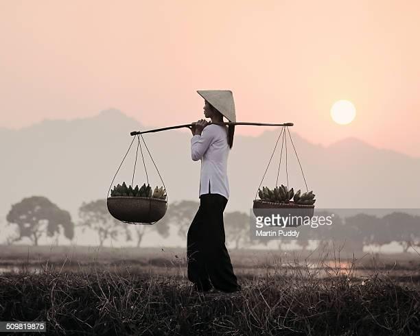 Vietnamese woman carrying baskets of bananas