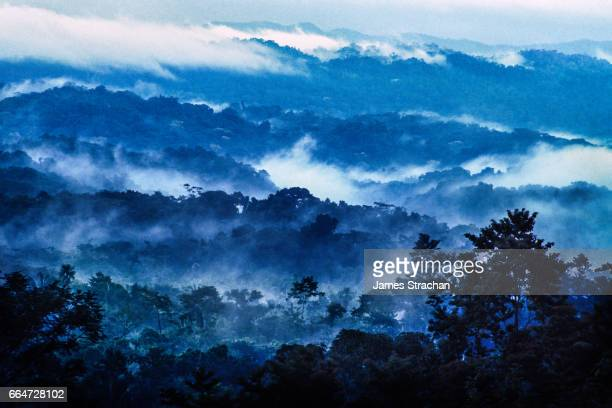 View across blue-tinted rain forest from Lubaantun to the Maya Mountains, Belize