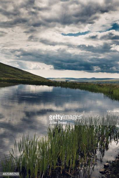 A view across Loch Roughley Photographed for the New York Times Style Magazine on August 8 2013 in Kelso Scotland