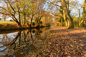 View along a canal in the Brecon Beacons in Autumn with leaves on the ground