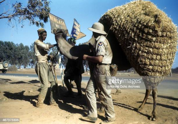 A view as a local tribesmen leads his camel past the US Air Force base in Benghazi Libya