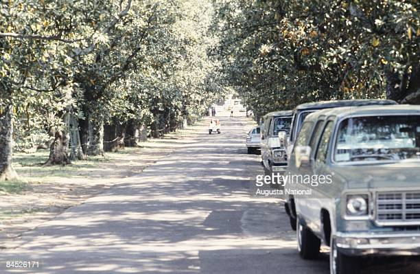 View down Magnolia lane with cars parked on the side during the 1978 Masters Tournament at Augusta National Golf Club on April 1978 in Augusta Georgia