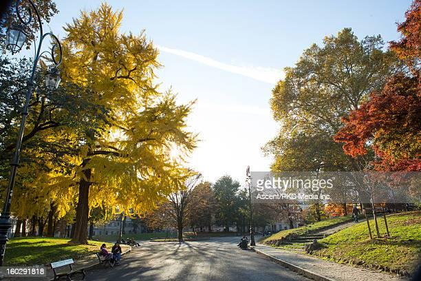 View down urban park corridor in autumn