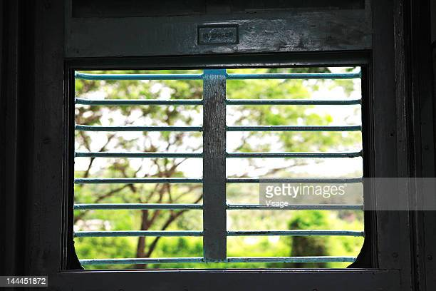 View from a window of a train