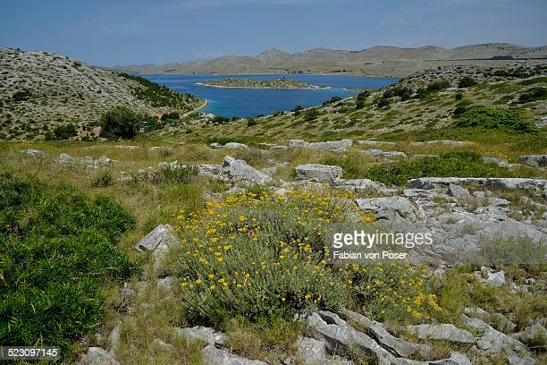 View from Levrnaka island over the Kornati Islands, Adriatic Sea, Kornati Islands National Park, Croatia