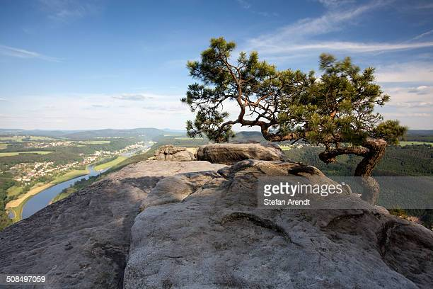 View from Lilienstein, a table mountain in the Elbe Sandstone Mountains, Saxony, Germany, Europe