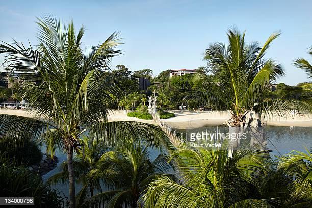 Cafe La Rope Palm Beach