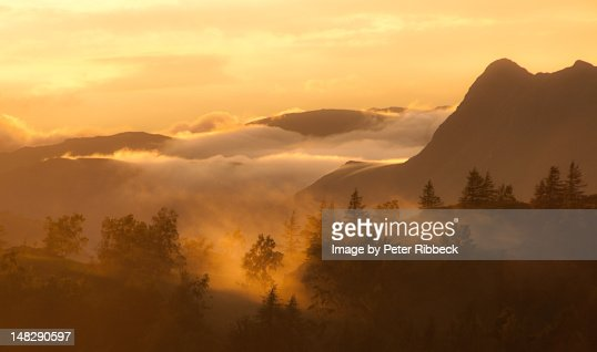 View from Tarn Hows : Stock Photo