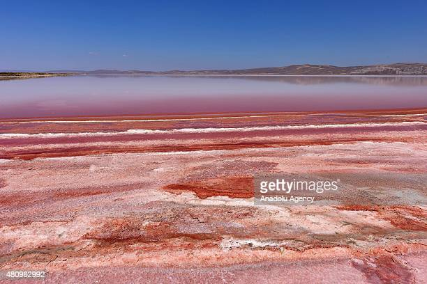 A view from the 'Salt Lake' in Aksaray Turkey on July 16 2015 Dunaliella salinas a type of halophile microalgae especially found in sea/lake salt...