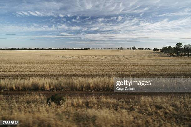 A view from the window of the Indian Pacific train on the second day on route to Adelaide on December 6 2007 in Adelaide AustraliaThe Great Southern...