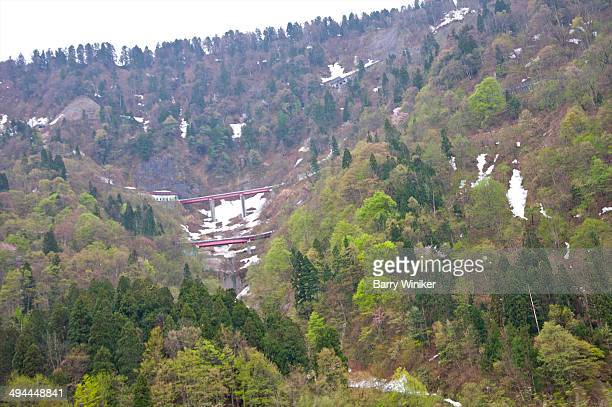 View from up high of trees on mountains in spring