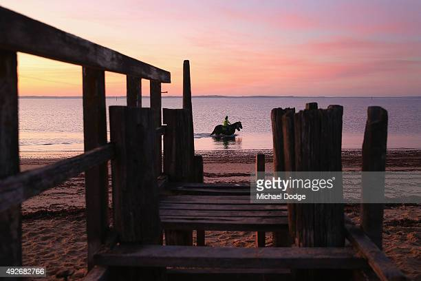 A view is seen through a rotted jetty as horses walk through the water at Balnarring Beach on October 15 2015 in Melbourne Australia Balnarring Beach...
