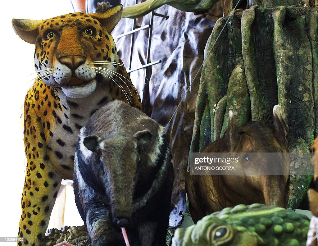 View of a float of Imperatriz Leopoldinense samba school with models of Amazon rain forest animals during preparations for the famous carnival parade at the Sambodromo, on February 4, 2013 in Rio de Janeiro. The samba schools parade will be held next February 10 and 11.