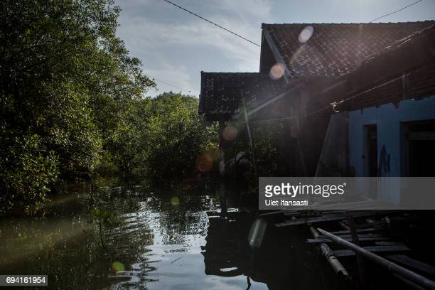 A view of a house submerged by flood waters from rising sea levels at Bedono village on June 7 2017 in Demak Indonesia Indonesia is known to be one...