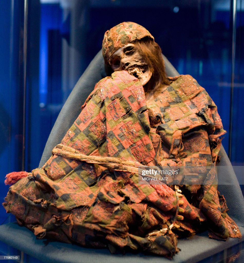 View of a mummified Inca woman at the 'Mummies The Dream of Everlasting Life' exhibition at the ReissEngelhorn Museum in Mannheim 27 September 2007...