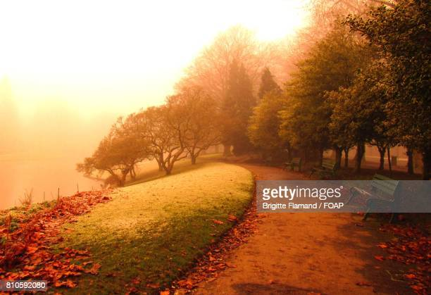 View of a park in morning