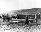 View of a pioneer family posing with their farm equipment and in front of their sod farmhouse Custer County Nebraska circa 1880s The farmhouse was...