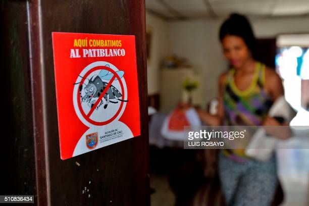 View of a poster against the Aedes aegypti mosquito on the door of seven months pregnant Maribel Gomez's house on February 17 in Cali Colombia Cali's...