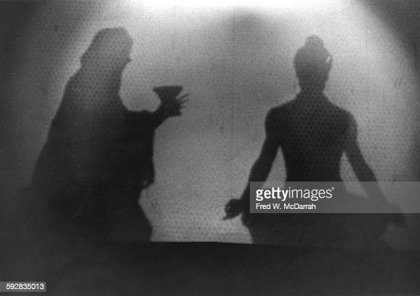 View of a scene from Dr Timothy Leary's multimedia presentation 'Illumination of the Buddha' at the Village Theatre New York New York December 6 1966