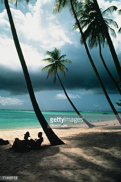 View of a scenic beach on a cloudy day, Pigeon Point, Tobago, Caribbean