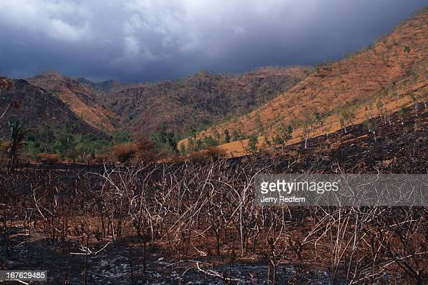 A view of a scorched hillside near Hera During the dry season large stretches of the countryside alight in raging fires leaving blackened hillsides...