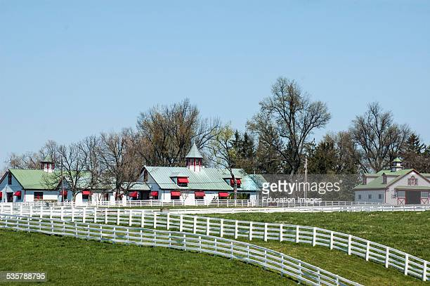 View of a section of Calumet Farm a 762 acre Thoroughbred horse breeding and training farm established in 1924 in Lexington Kentucky USA