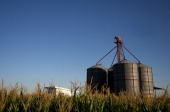 View of a silo for wheat in a field near Route 36 on the outskirts of San Agustin in the province of Cordoba 713 km northwest of Buenos Aires...