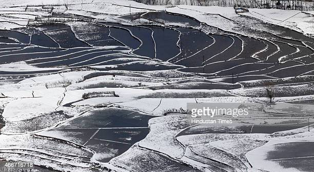 A view of a snow covered paddy field At Lower Munda near Jawhar Tunnel on March 18 2015 some 80 Kms from Srinagar India The SrinagarJammu National...