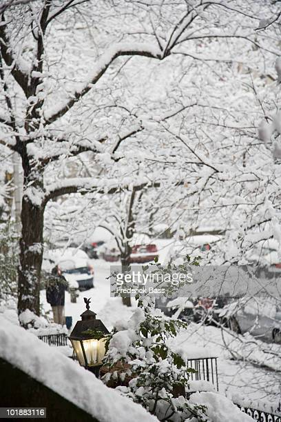 View of a snowy street from a front stoop, Brooklyn, New York, USA