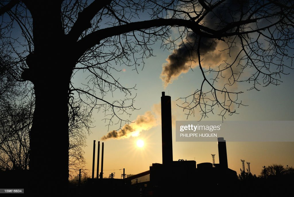 A view of a tree and smoke rising from stacks at a factory in Lille, on January 17, 2013.