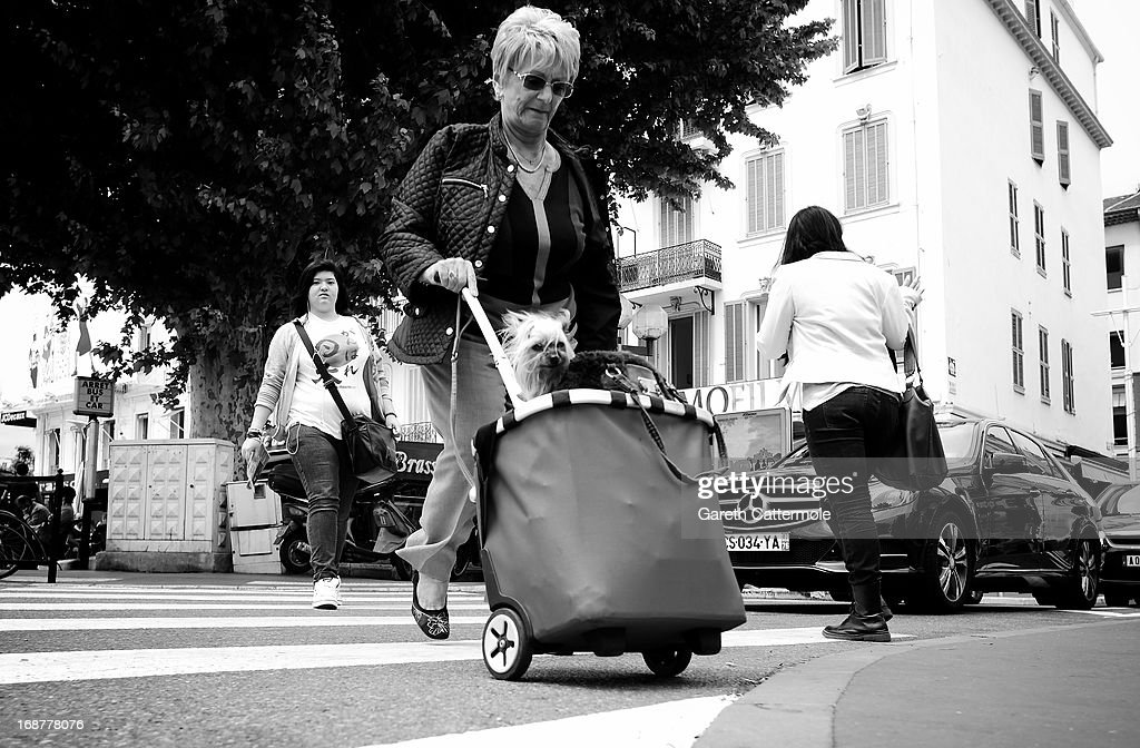 A view of a woman pushing a dog in a shopping bag during the 66th Annual Cannes Film Festival on May 15, 2013 in Cannes, France.