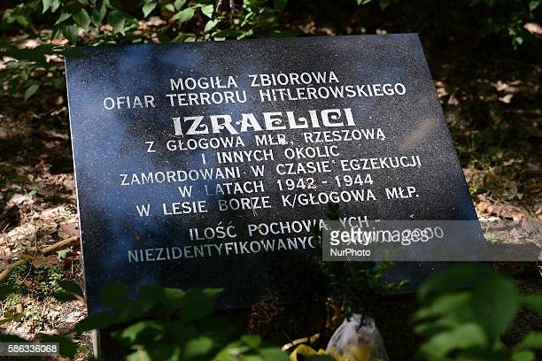 A view of an information bord in Polish on one of three common graves a place where 5000 Jews were killed by Nazi Germans in July 1942 in Krakow...