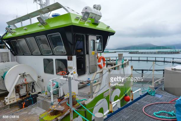 A view of AQS Hermod cargo boat attached to a salmon farmboat 'Sulatind' near Rolla and Andorja Island Norway Royal Salmon informed that its...